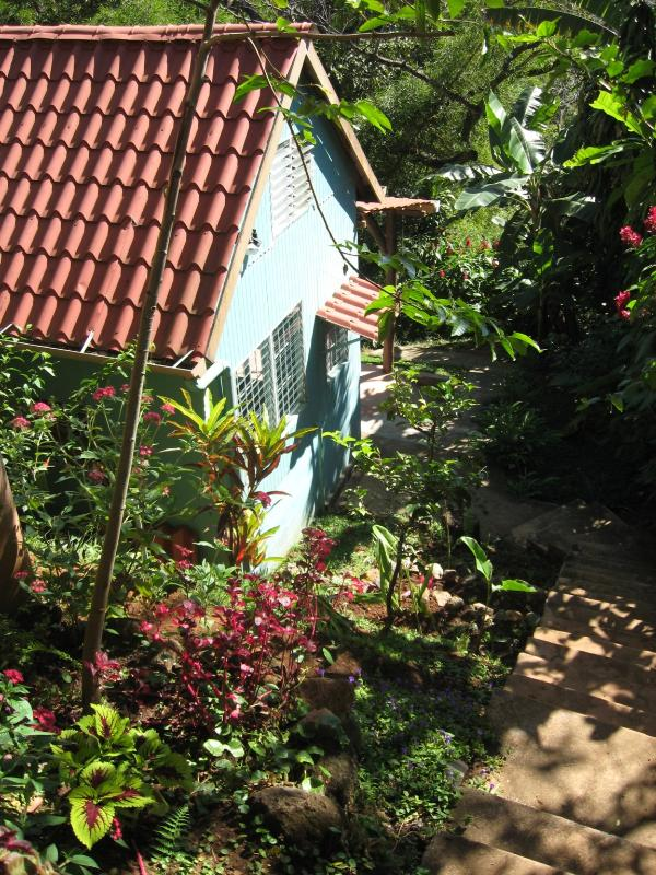 Private Cabin - Secluded country cabin with jungle view & WIFI - Atenas - rentals