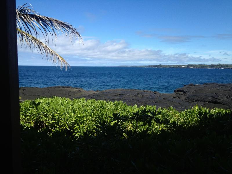 View from the back - Waterfront! - Pahoa - rentals