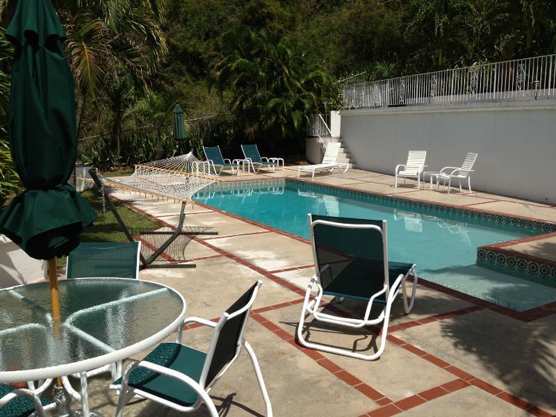 Pool - 4 Bedrooms 4.5 Bathrooms - Saint Thomas - rentals