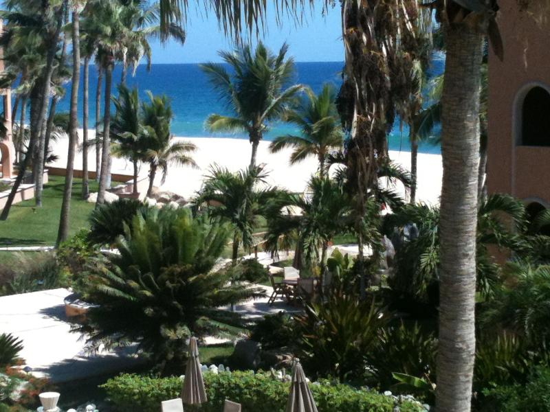 view from terrace - Beautiful Ocean view Condo - San Jose Del Cabo - rentals