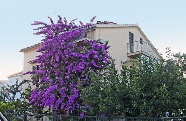 Apartment Puljiz - Image 1 - Trogir - rentals