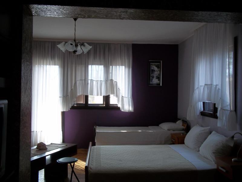 Apartment 1 Bedroom & 2 Bath with Terrace - Image 1 - Kotor - rentals