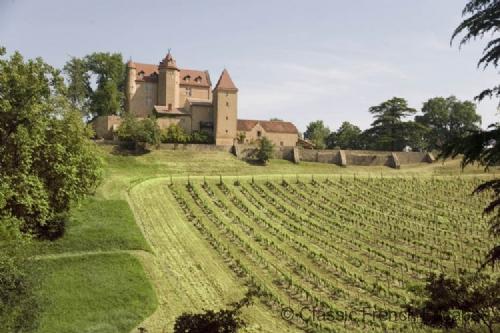 Breathtaking Chateau FRMD114 - Image 1 - Arricau-Bordes - rentals