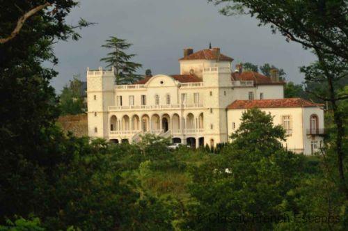 Sumptious Chateau Hideaway, Gers FRMD141 - Image 1 - Saint Sever - rentals