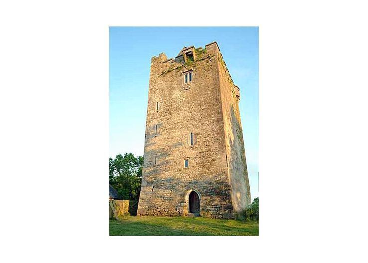 Towerhouse Castle - Image 1 - Kilkenny - rentals