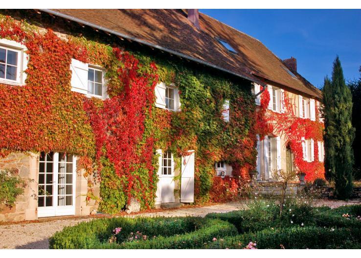 - Image 1 - Saint-Priest-Ligoure  - rentals