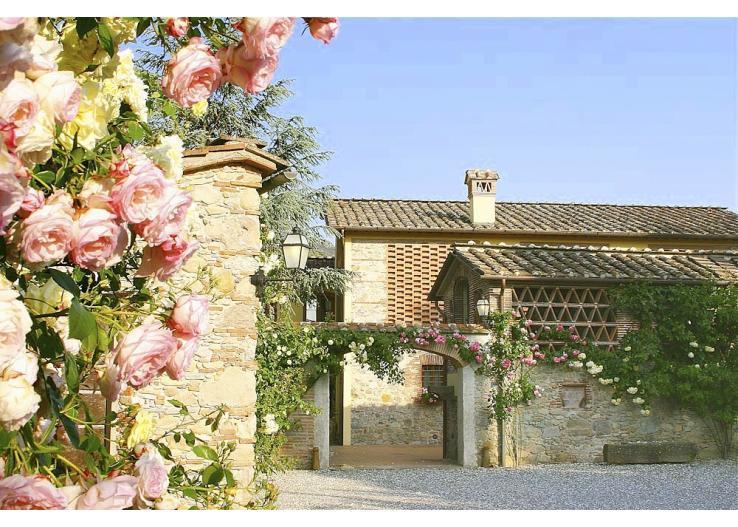 Villa Il Mulino - Image 1 - Vorno - rentals