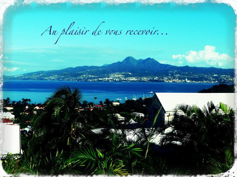your view! La vue depuis la terrasse; - La case de Mathurin, Beau T1, vue mer... - Trois-Ilets - rentals