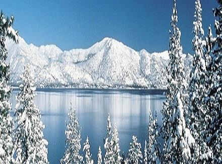 Awesome Lake Tahoe views nearby - NEW SNOW AT HEAVENLY VALLEY SKI SLOPES BEST LOC - South Lake Tahoe - rentals