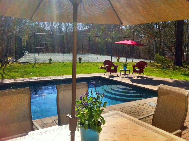beautiful pool - NEW AVAILABILITY FOR MEMORIAL DAY WEEKEND !!! - Quogue - rentals