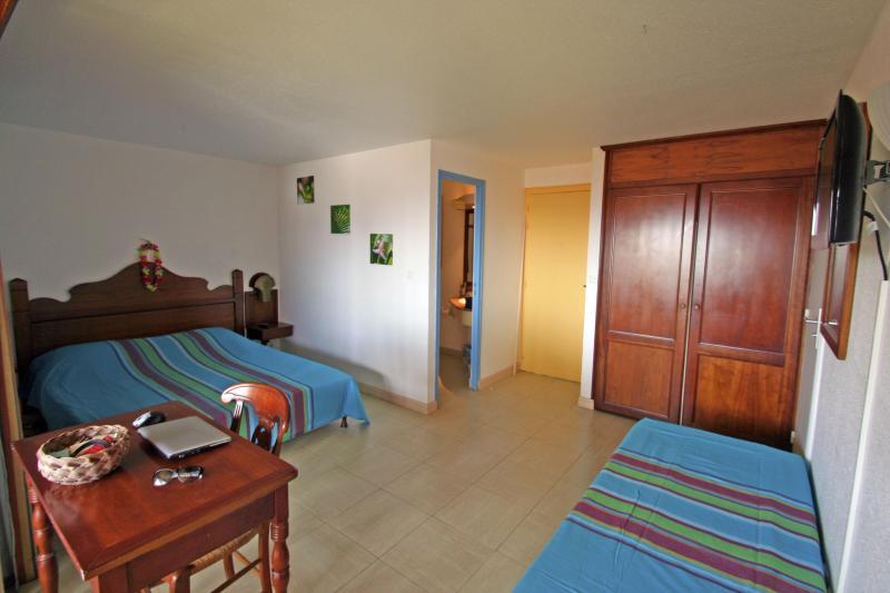 Pièce principale - Studio tout confort vue mer anse Caritan Sainte Anne Martinique - Sainte-Anne - rentals