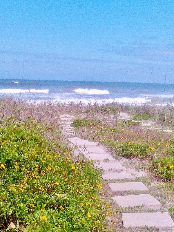 Private Path To Beach - Direct Ocean Front Updated, Modern, Light & Bright - Ormond Beach - rentals