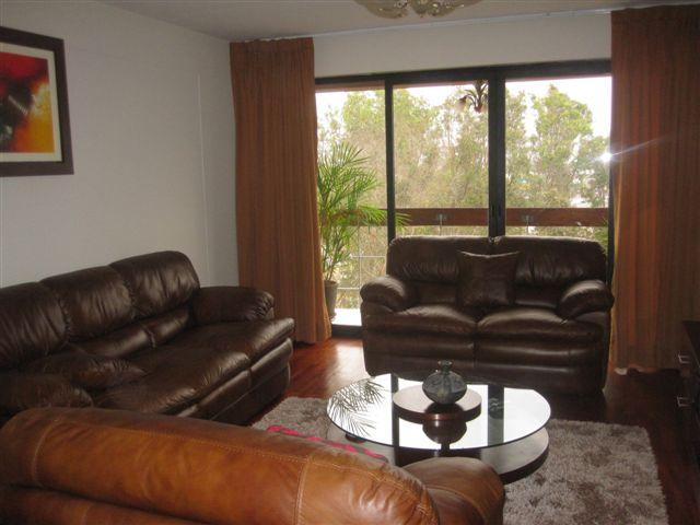 """Miraflores Cozy Apartment  """"...Feels like home"""" - Image 1 - Lima - rentals"""
