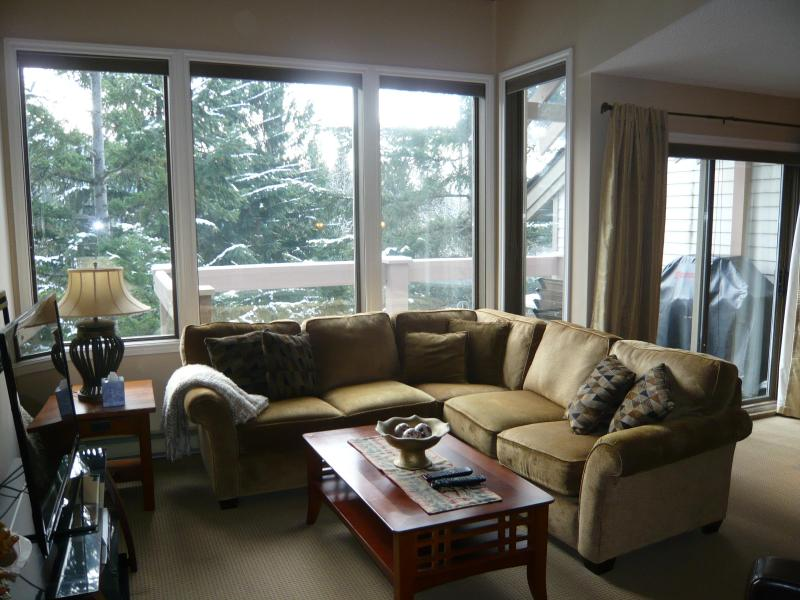 Look out onto forested pathways and Valley Trail - Close to Village Gate Blvd, easy walk into town. - Whistler - rentals
