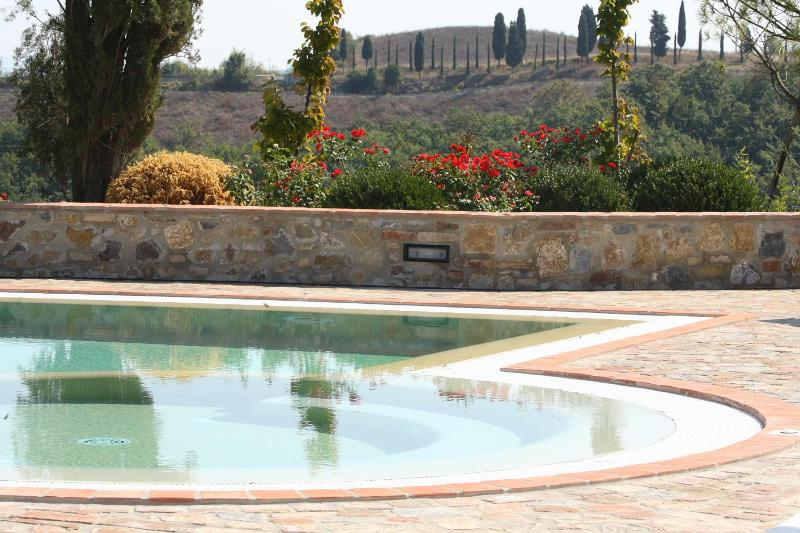 Private villa with pool, sleeps 10 - Image 1 - Montaione - rentals
