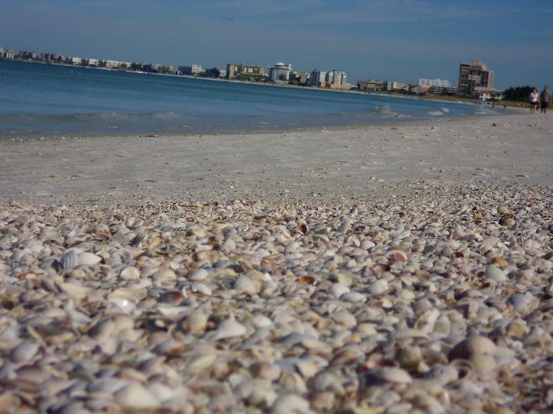 It is only a short walk to St. Pete Beach. - Discover The Charm of St Pete Beach - Saint Pete Beach - rentals