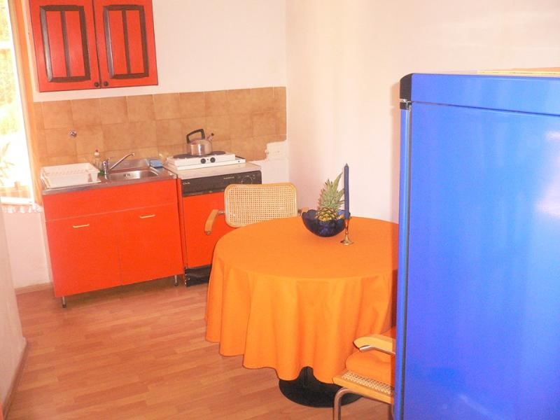 Apartment Pineapple express - Image 1 - Pula - rentals