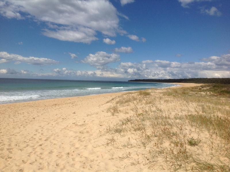 Beach - Beach house for holiday rental - Moruya - rentals