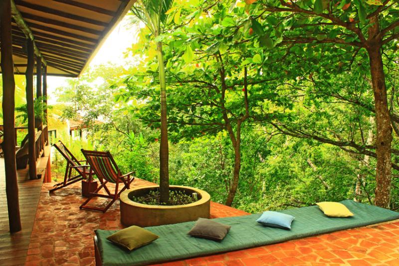 Terraces - Villa Pochote the forest at your fingertips! - Montezuma - rentals