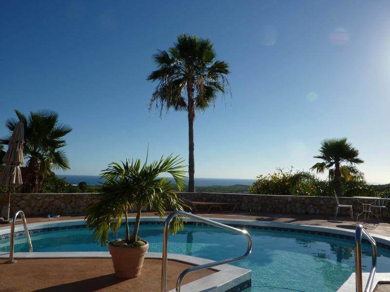 pool deck - Mountain Top Private Retreat - studio with a porch - Saint Croix - rentals