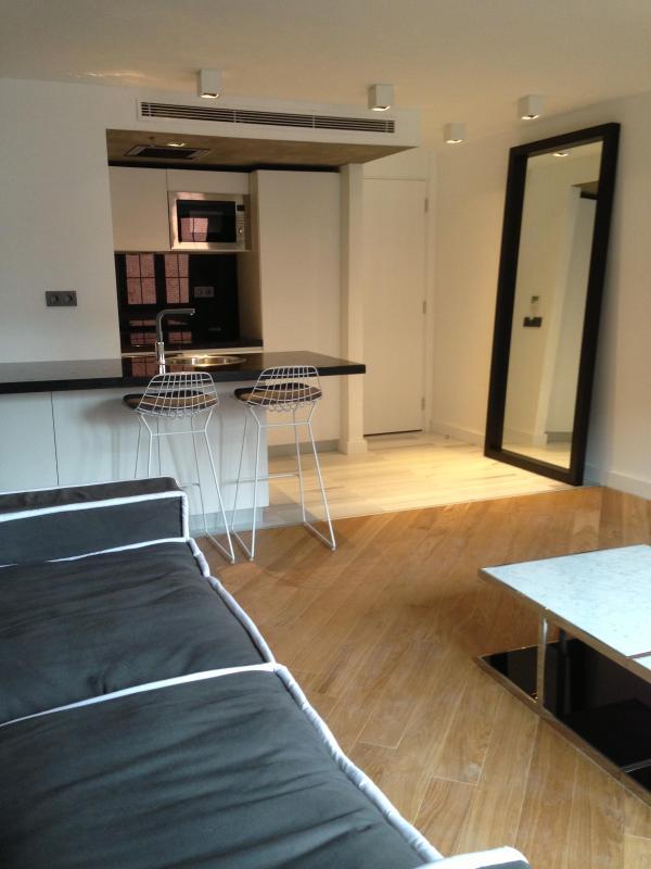 Living Room & Open Kitchen - The Capital Suites.Best location ever in Besiktas-Bosphorus - Istanbul - rentals