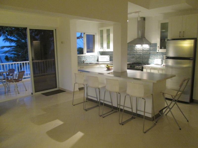 Lots and lots of space with 15' ceilings ALL beach front with FULL view - WIDEST balcony 37' (12 m) on Windy Kitebeach - Cabarete - rentals