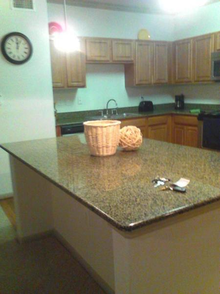 Great Apartment in Galleria/We2GA9100827 - Image 1 - Houston - rentals