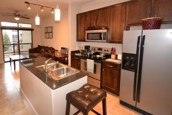 Wonderful Apartment in Galleri2GA11111303 - Image 1 - Houston - rentals