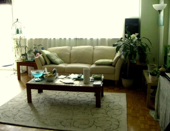 bright large living area - north Toronto condo, easy to get downtown - Ontario - rentals