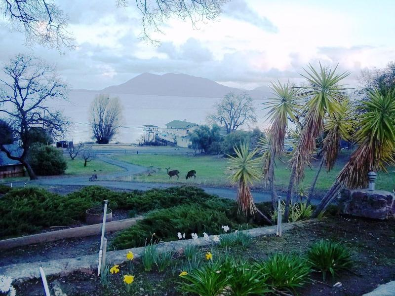 LAKE VIEW FROM DECK - House of the Rising Sun in Lakeport on Clear Lake - Lakeport - rentals