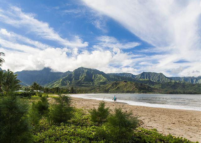 Hanalei Bay Carriage House - a short walk to the sand!! - Image 1 - Hanalei - rentals