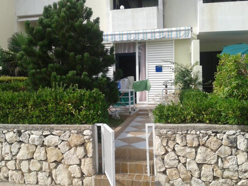 Ravishing apartment Drago for 4 person in Gajac - Image 1 - Novalja - rentals