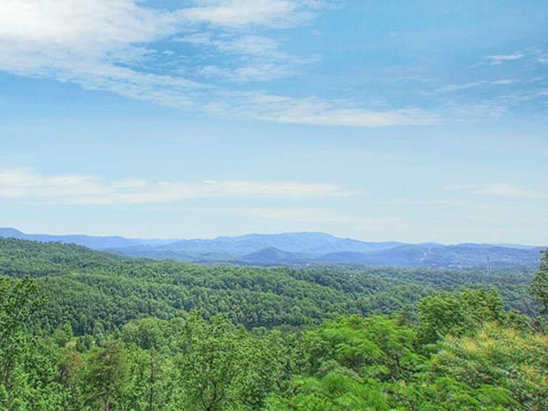 Tree Top View - Image 1 - Pigeon Forge - rentals