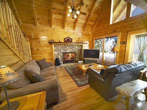 Layz Dayz Lodge - Image 1 - Pigeon Forge - rentals