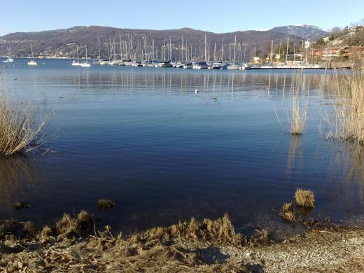 Lago Maggiore appartamento direttamente sul lago - Image 1 - Monvalle - rentals