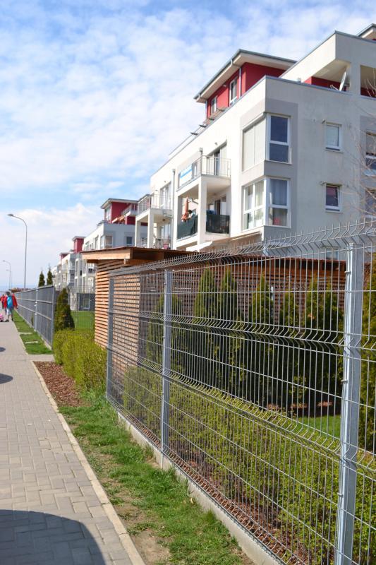 Alina's Apartament - Image 1 - Brasov - rentals