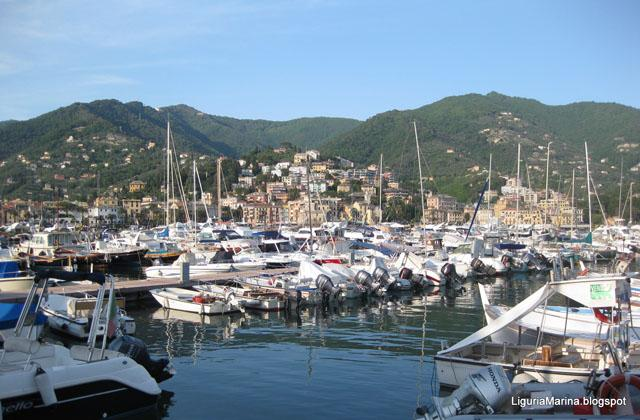 Rapallo, apartment on the Ligure Sea - Image 1 - Rapallo - rentals