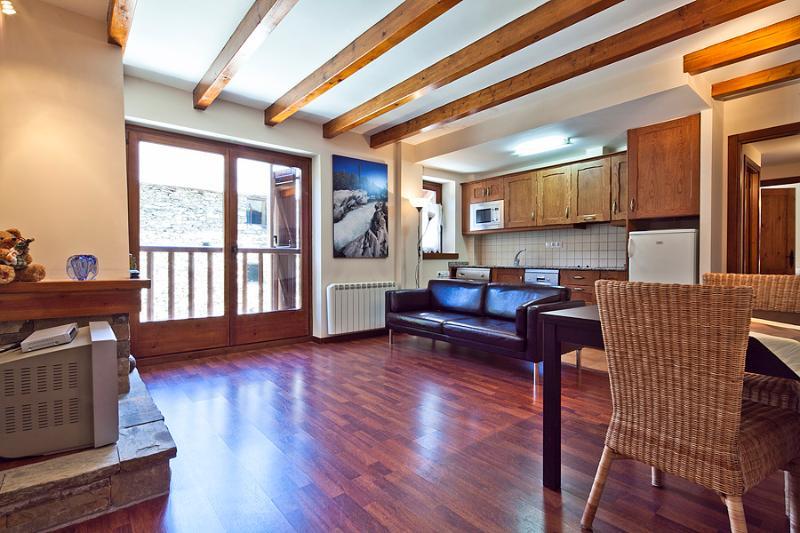 Livingroom1 - Valencia de Aneu 2 bedrooms - Valencia d'Aneu - rentals