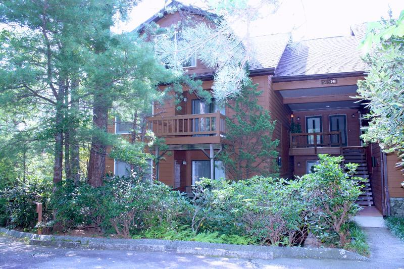 North Carolina Mountain Retreat - Image 1 - Cashiers - rentals