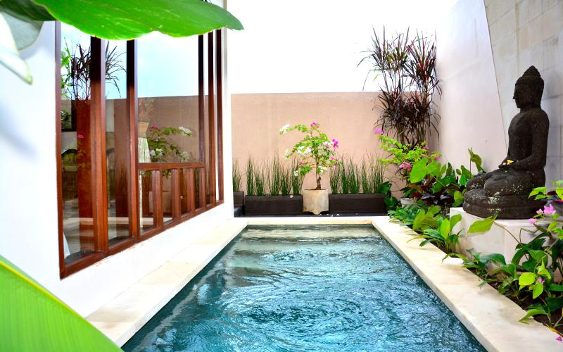 Your own private pool - Charming Villa Siri -1BR In Ricefield - Walk to Ubud - Ubud - rentals