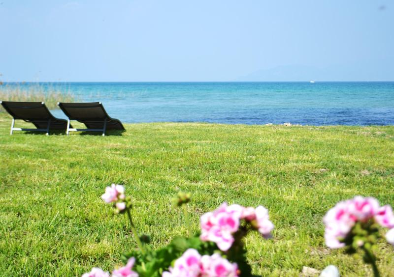 Wow! Amazing garden - ★ NEW ★ Unique Flat on the beach! - Peschiera del Garda - rentals