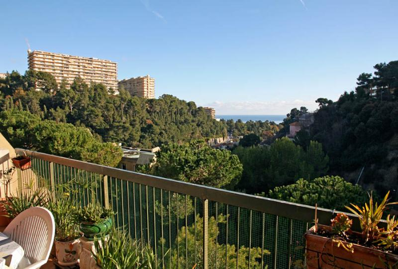 apart with sea view - Image 1 - Nice - rentals