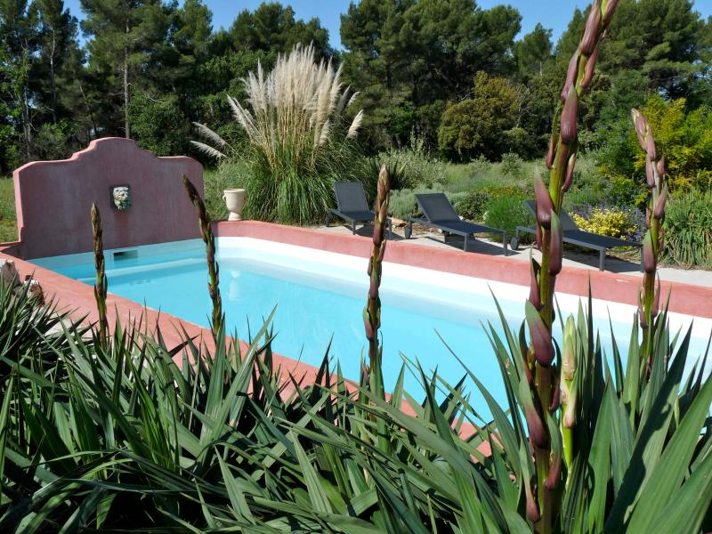 Pool - In between Olive trees and lavander - Puyricard - rentals