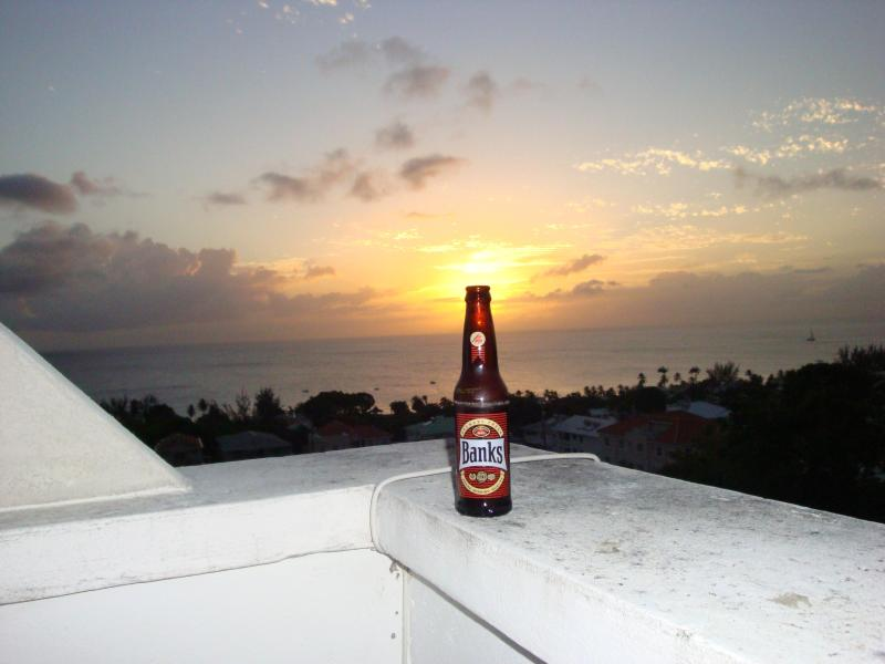 Sunshine in a bottle! Banks Beer - West Coast villa 4 bedrooms free wifi internet - Prospect - rentals