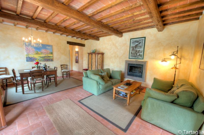 a living room view of il Sangiovese  - Sangiovese - Paciano - rentals