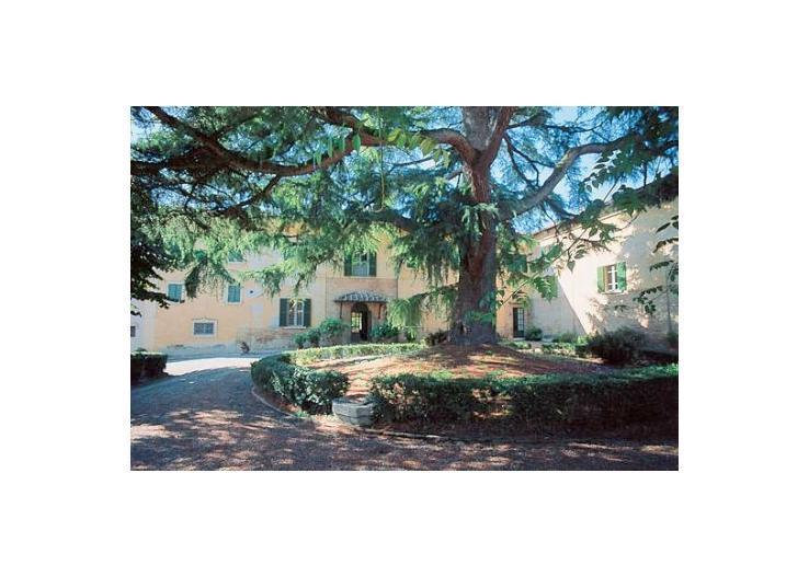 italy/tuscany/villa-cedro - Image 1 - Buonconvento - rentals