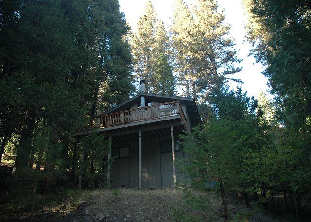 Treetop views from the deck of the Mendonca Cabin- 3 bdrm, 2 bath, sleeps 10. - Image 1 - Dorrington - rentals