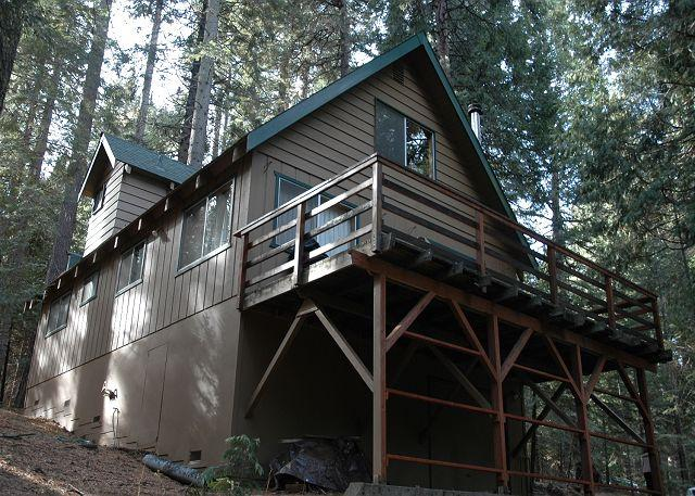 Hicks tree Fort offers a great deck to BBQ, relax and take in the forest.  - Hicks Tree Fort. Perfect place for relaxing w 3 bedrooms, 2 baths, sleeps 8. - Dorrington - rentals