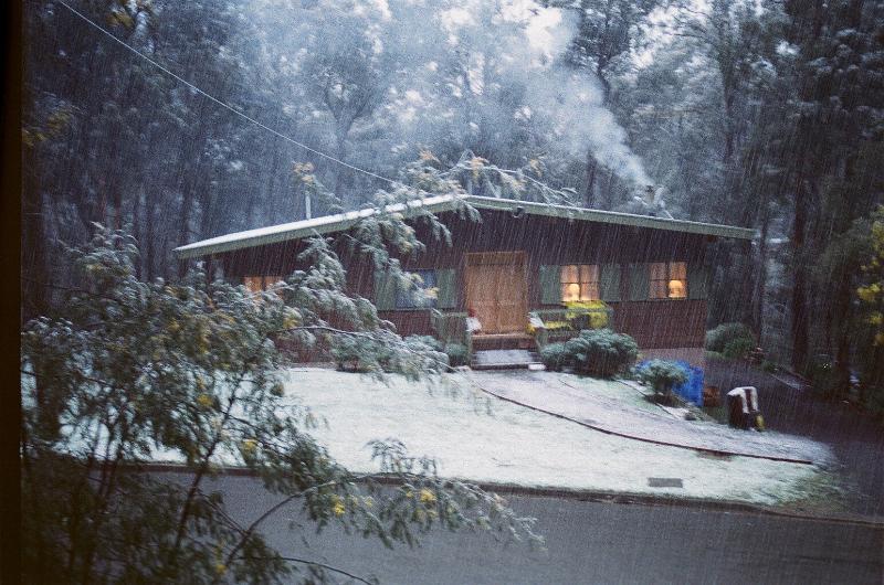 Mountain Gum Chalet - Mountain Gum Chalet - Ski Chalet - Mt Buller - rentals