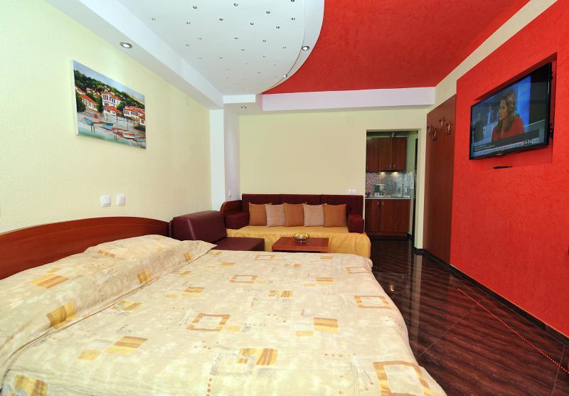 Villa Dislieski - Image 1 - Ohrid - rentals